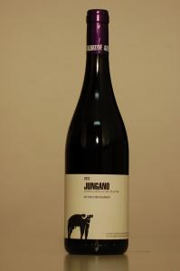 San Salvatore - Jungano